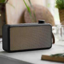 Bluetooth-Radio tRADIO