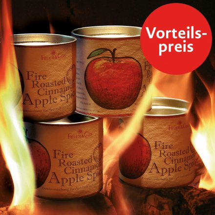4er-Set Apfelsaft Gewürz 'Fire Roasted Cinnamon'