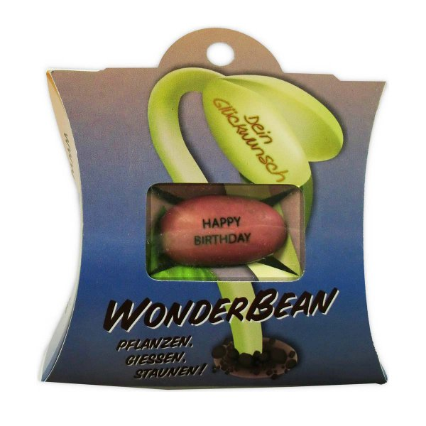 WonderBean 'Happy Birthday'